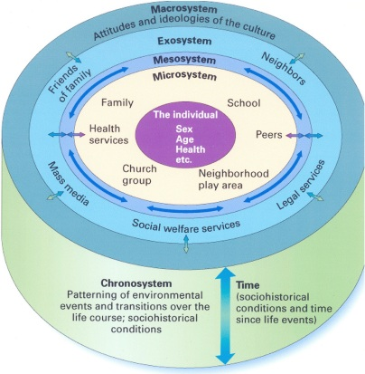 ecosystem bronfren.jpg